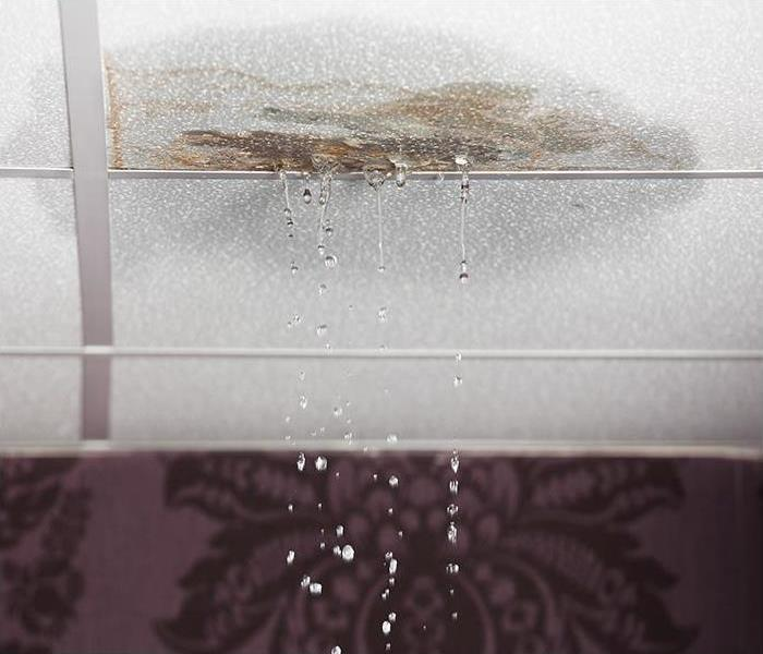 Mold Damage From Roof Leak Your Charleston Home