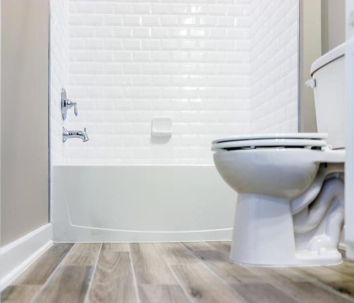 What to do when your toilet overflows onto carpet — photo 1